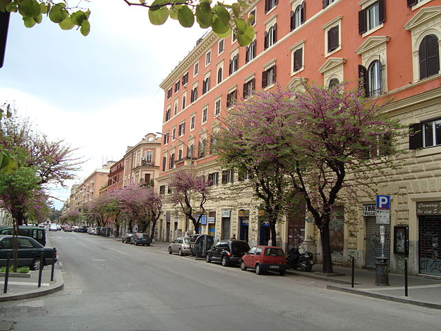 Foto del Quartiere San Lorenzo a Roma