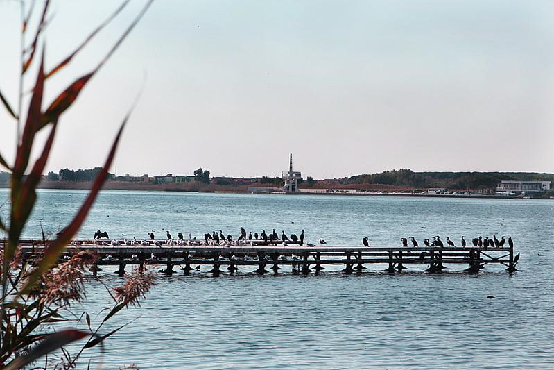 Uno scorcio del lago di Patria